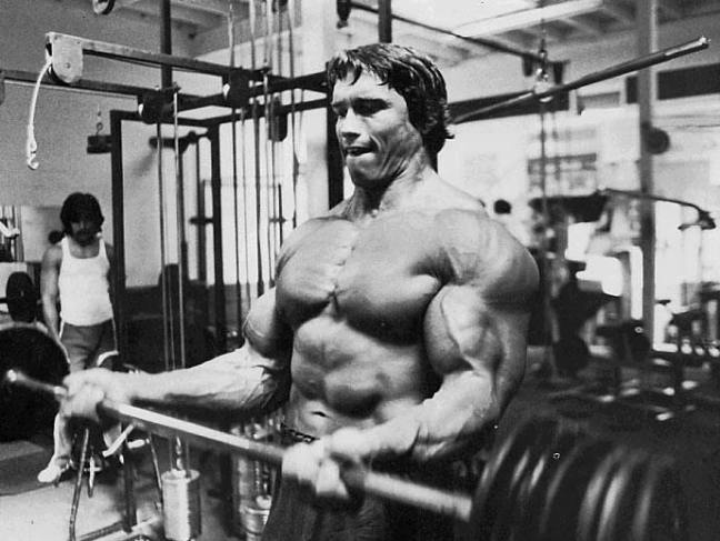 arnold48